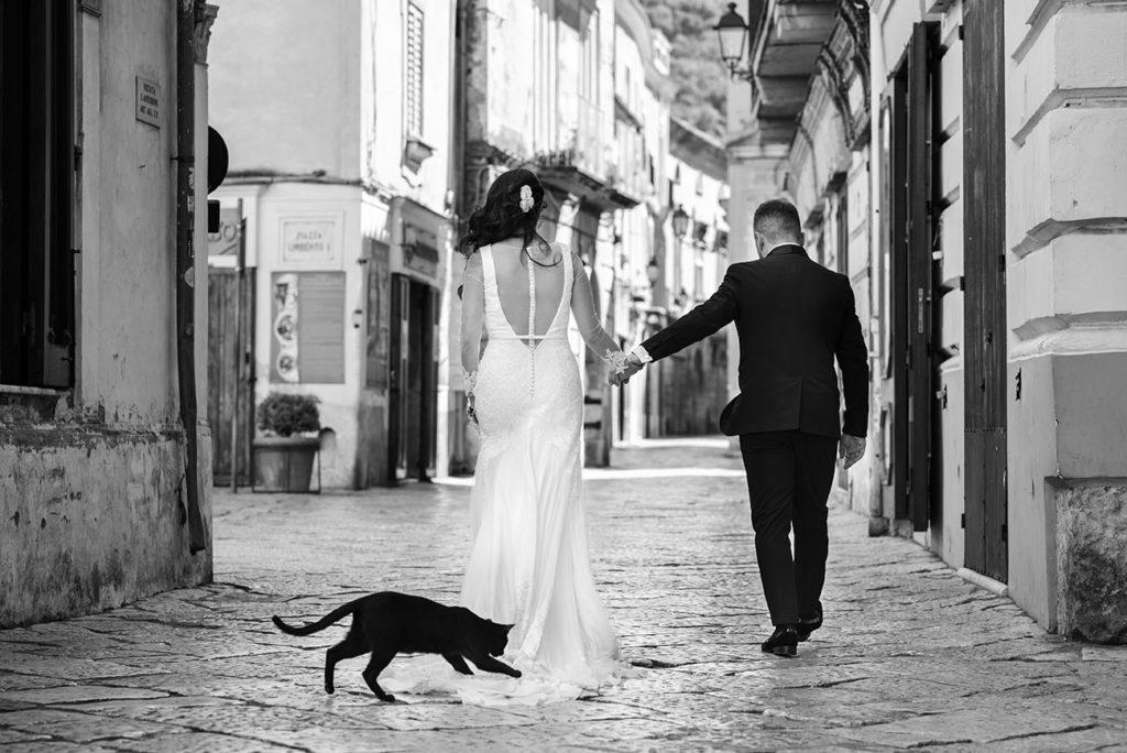 foto spontanea-gatto afferra abito sposa