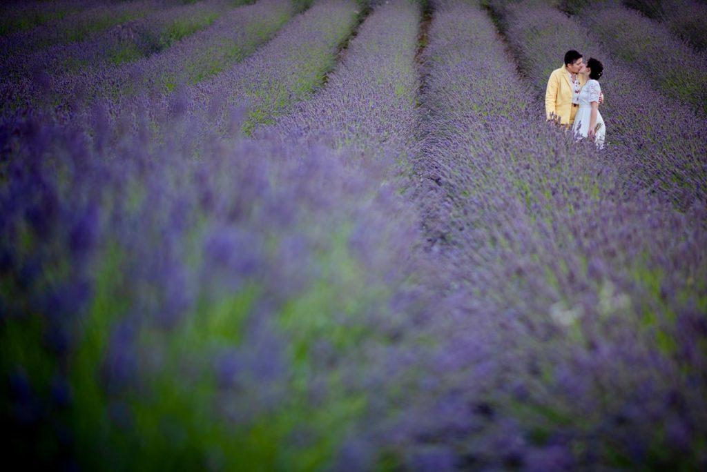 unione civile-bologna-spose in un campo di lavanda